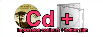 Duplication Cd couleurs dans boitier Cd slim